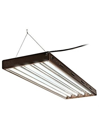 T5 Designer, 4 Ft, 4 Tube Fixture with Bulbs
